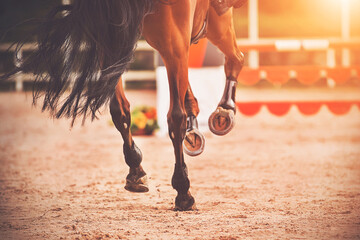 The shod hooves of a galloping bay horse step on the sand of an outdoor arena at equestrian competitions. Horse riding. Equestrian sports.