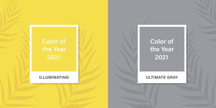 Color 2021. Color of the Year 2021. Ultimate Gray. Illuminating.  Vector abstract background tropical palm leaves. Stock vector mockup template.