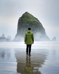 Obraz Rear View Of Man Walking At Beach During Winter - fototapety do salonu
