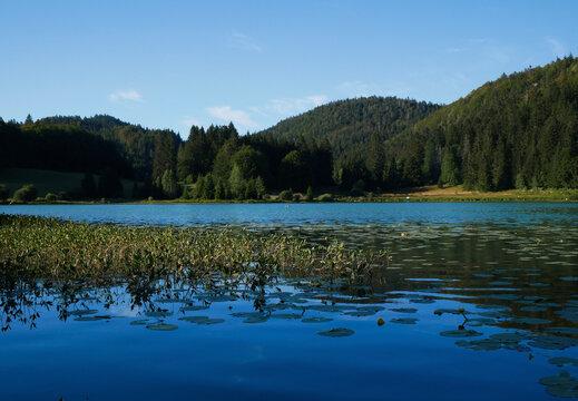 """Le lac genin , """"le petit Canada du haut bugey, Jura , France"""