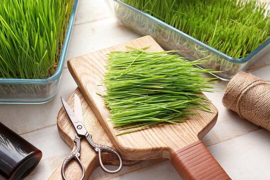 Fresh wheatgrass, bottle and twine on light background