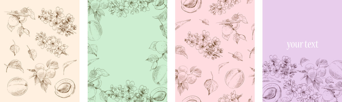 Set of hand drawn elements apricot plant. Template for cards, placard, cover, wallpaper, wrapping paper. Vector art illustration