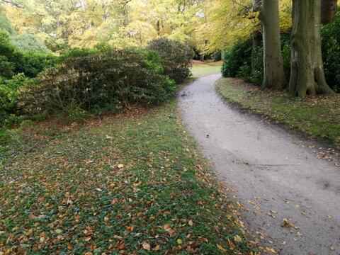 Wanderweg für Spaziergänger im Herbst im Schlosspark Lütetsburg bei Norden in Ostfriesland in Niedersachsen