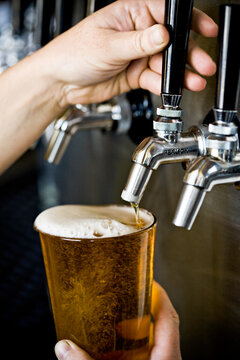 Detail shot of a caucasian bartender's hands filling a pint of beer from a line of several taps.
