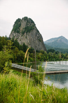 A dock stretches out over the water with a view of mountains and foliage in the background and tall grass in the foreground.