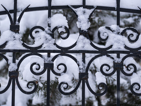 fragment of wrought metal black fence covered with snow