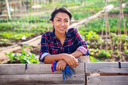 Successful Latin American woman amateur gardener standing near wooden fence in her vegetable garden on sunny spring day