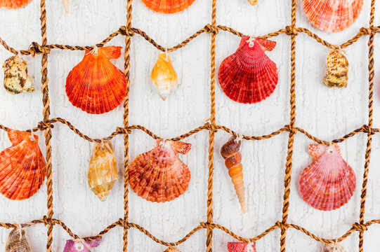 Close-up abstract shell background on a fish-net and white wooden background.