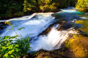 McKenzie River Cascades, Willamette National Forest, Oregon Wall mural