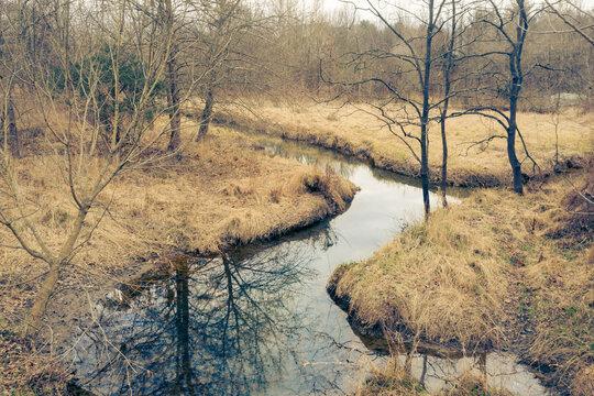 Calm creak wandering through winter grass and trees No Snow