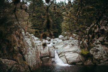 lago y una cascada en un bosque Wall mural