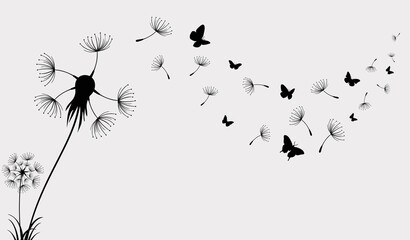 Fototapeta Dandelion with flying butterflies and seeds, vector illustration