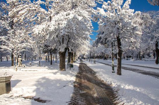 Bitola, Macedonia – city park during winter