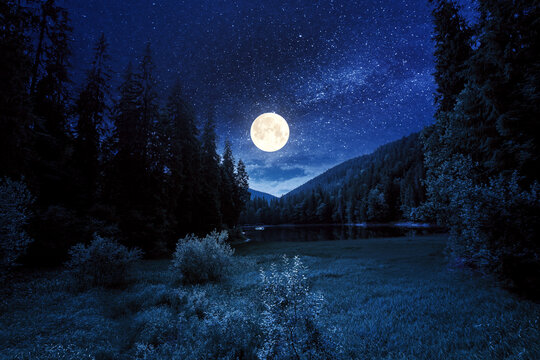 mountain lake landscape in summer at night. beautiful scenery of synevyr national park. body of water among the forest in full moon light. great view and amazing attarction of carpathian nature