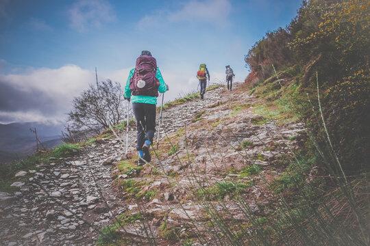 Pilgrims with Hiking Gear Climbing a Hill outside O Cebreiro Galicia Spain along the Way of St James Camino de Santiago Pilgrimage Trail
