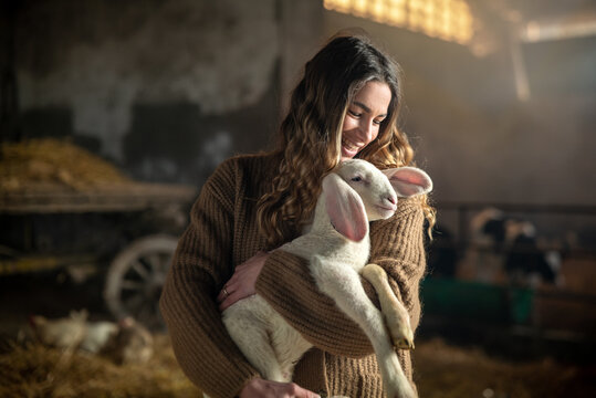 Cinematic shot of happy young female farmer is caressing with love and care ecologically grown newborn lamb used for biological genuine wool industry in hay barn of countryside agricultural farm.