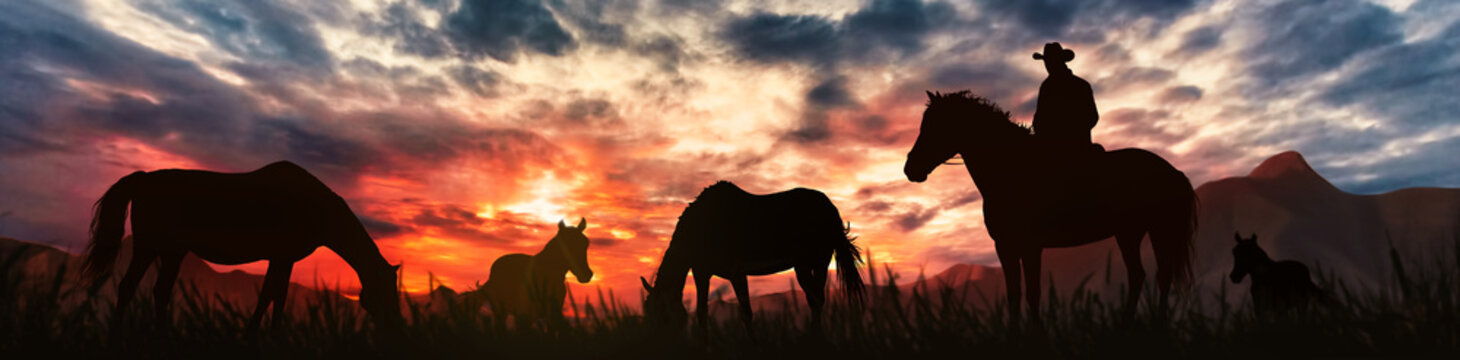 silhouette of a horse breeder cowboy at sunset