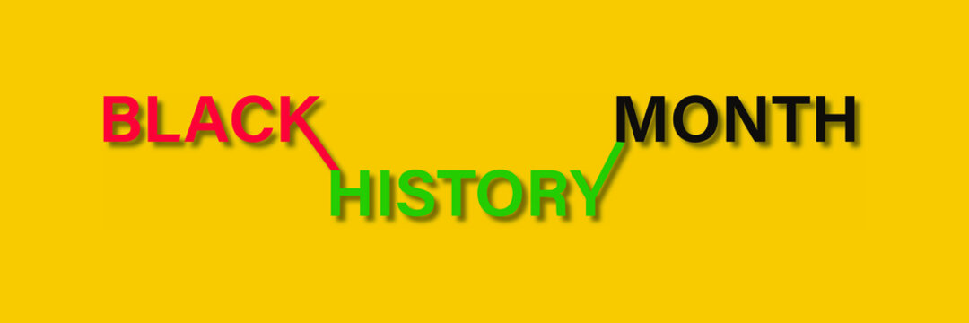 African American History or Black History Month. Celebrated annually in February in the USA, Ireland, Netherlands, and Canada