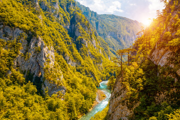 Wall Mural - Vibrant scene of great canyon of river Piva. Location place National park Durmitor, Montenegro.