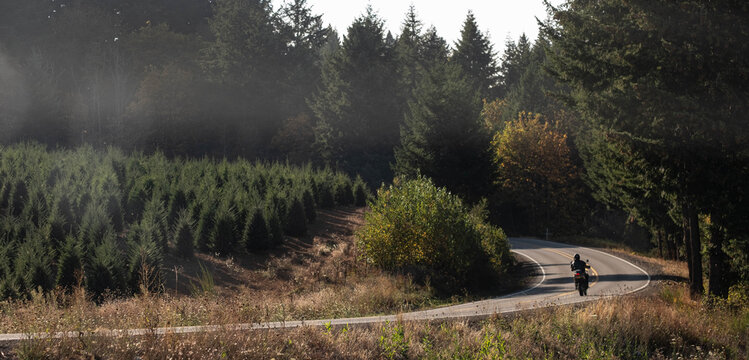 Lone rider on motorcycle riding on an isolated country road amongst trees and nature