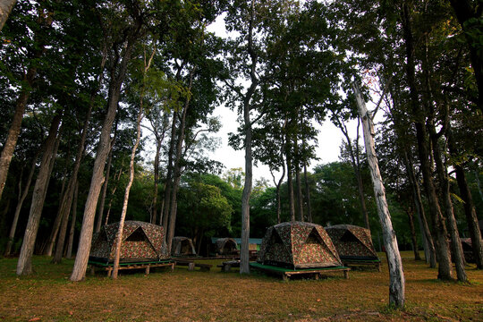 camping tents at the outdoor camp site