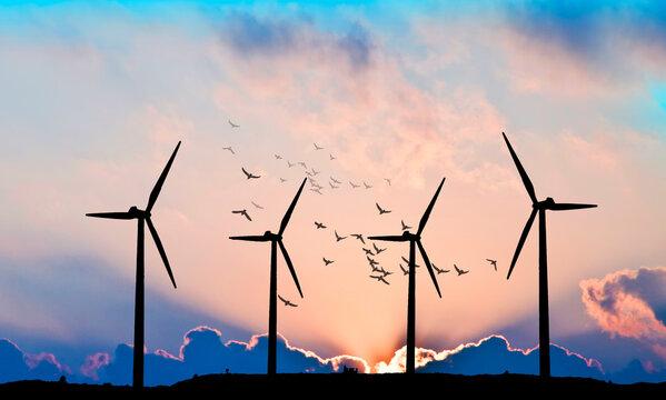 paisaje de unos molinos de viento al atardecer