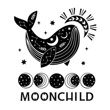 celestial poster with black whale and moon phases