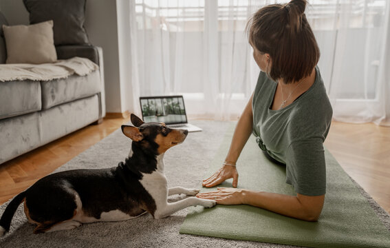Cheerful beautiful woman practicing yoga at home online from laptops by video chatting on the carpet and yoga mate with her dog nearby, sports and mental health