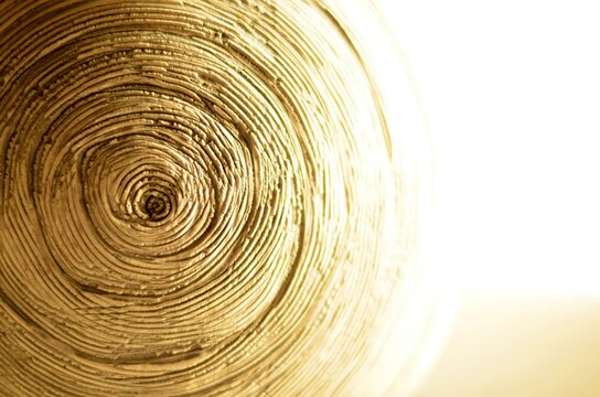 abstract, wood, texture, circle, pattern, spiral, tree, bamboo, light, swirl, wooden, design, brown, ring, round, nature, surface, cut, closeup, art, timber, macro, material, textured, color