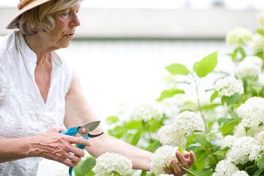 Seniorin bei Gartenarbeit