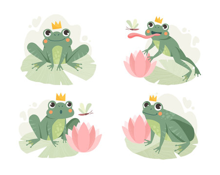 A set of images of a frog stalking and hunting a flying dragonfly. Set of flat cartoon vector illustrations isolated on white background