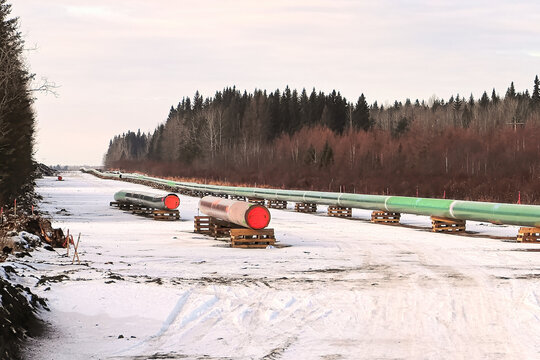 A long row of pipeline being pieced together