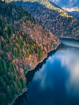 Aerial view of forested shore of Lake Ritsa in autumn