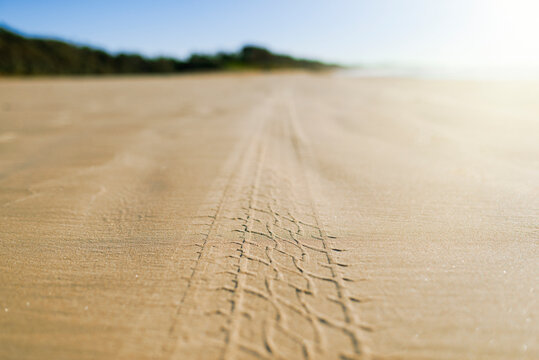Tyre tracks on beach in morning