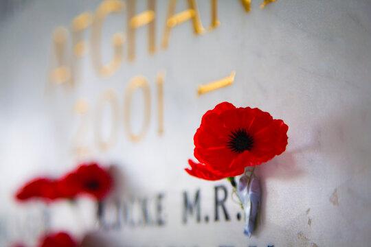Poppy at war memorial wall