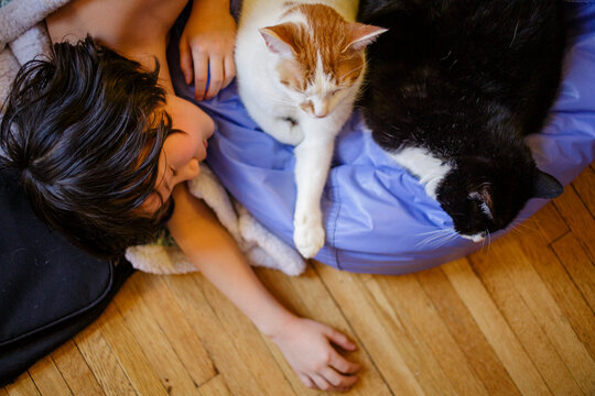 A beautiful boy lays on the wood floor sleeping with two cats