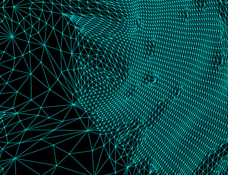 Cobweb or spider web. Network background. Connection structure. 3D wireframe vector illustration in technology style.
