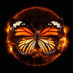 orange butterfly flying in space against the sun. Elements of this image furnished by NASA