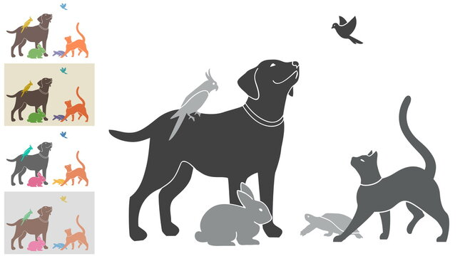 Vector illustration with a group of pets for your design. Black and white and four color options. All animals are drawn separately - you can move, delete some of them.