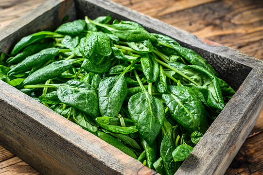 Young baby spinach leaves in a farm wooden box. Natural wooden background. Top view