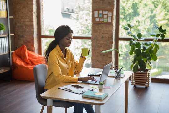 Photo of optimistic curly brunette hair pretty girl drink tea type laptop sit by table wear yellow shirt at home