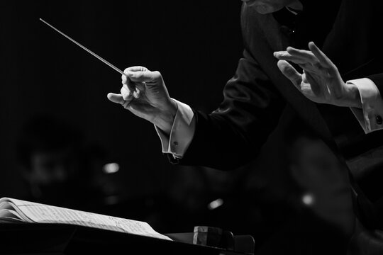 Hands of a conductor of a symphony orchestra close-up in black and white