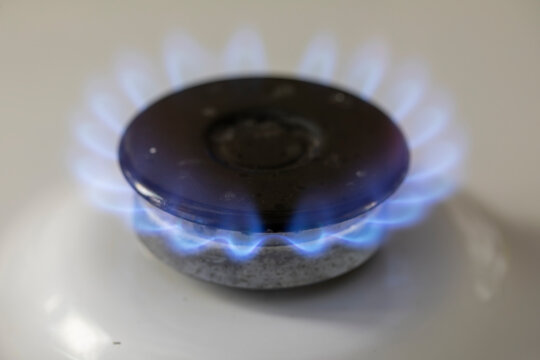 Gas stove top with blue fire flame