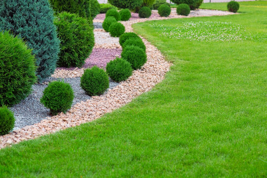 Landscape bed of garden with wave ornamental growth cypress bushes gravel mulch by color rock way on a day spring park with green lawn meadow, nobody..