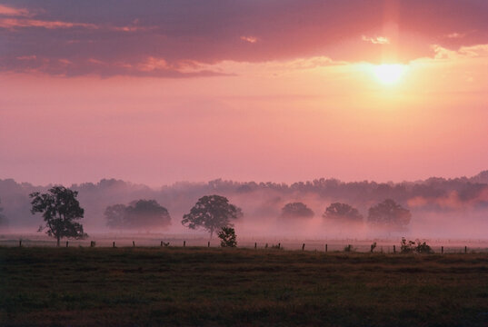 Foggy countryside landscape at sunrise, Texas, USA