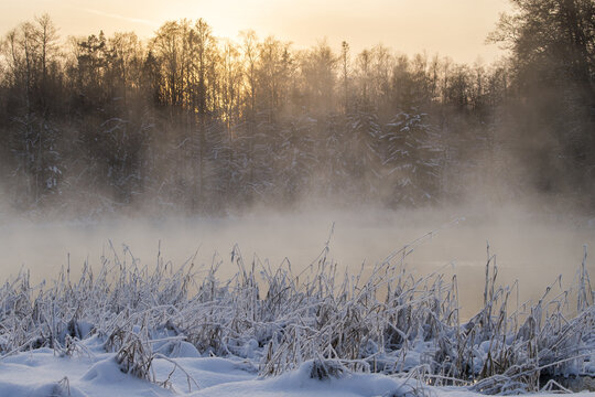 Beautiful shot of steam rising from a river in a snowy forest on a warm winter day