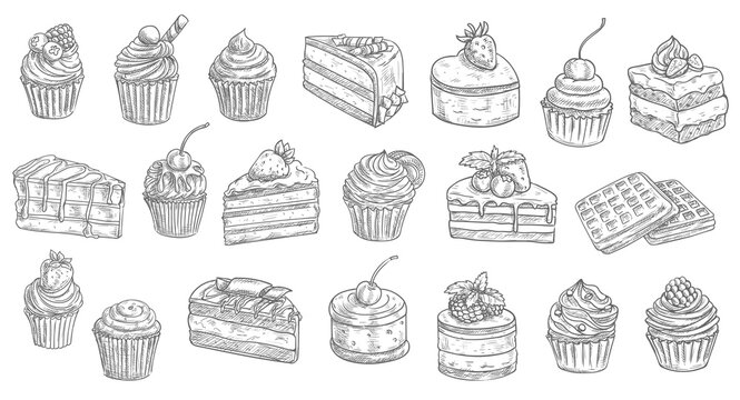 Cakes and cheesecakes sketch, pastry desserts and sweet food vector hand drawn icons. Bakery and pastry shop sweet chocolate cakes, patisserie sweet dessert cheesecake, tiramisu, brownie and waffles
