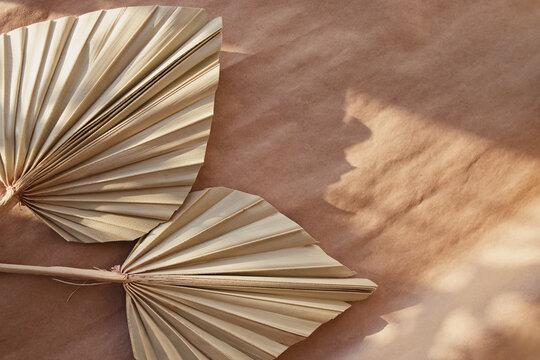 Minimal stationery still life. Dry palm leafs on craft paper.