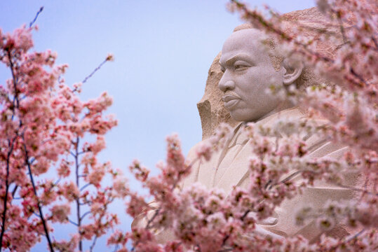 WASHINGTON - APRIL 8, 2015: The memorial to the civil rights leader Martin Luther King, Jr. during the spring season in West Potomac Park.