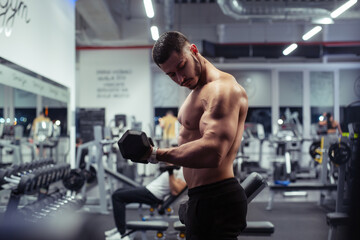 Young bodybuilder working out with dumbbells weights at the gym - fototapety na wymiar